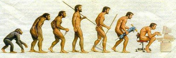 The Human evolution